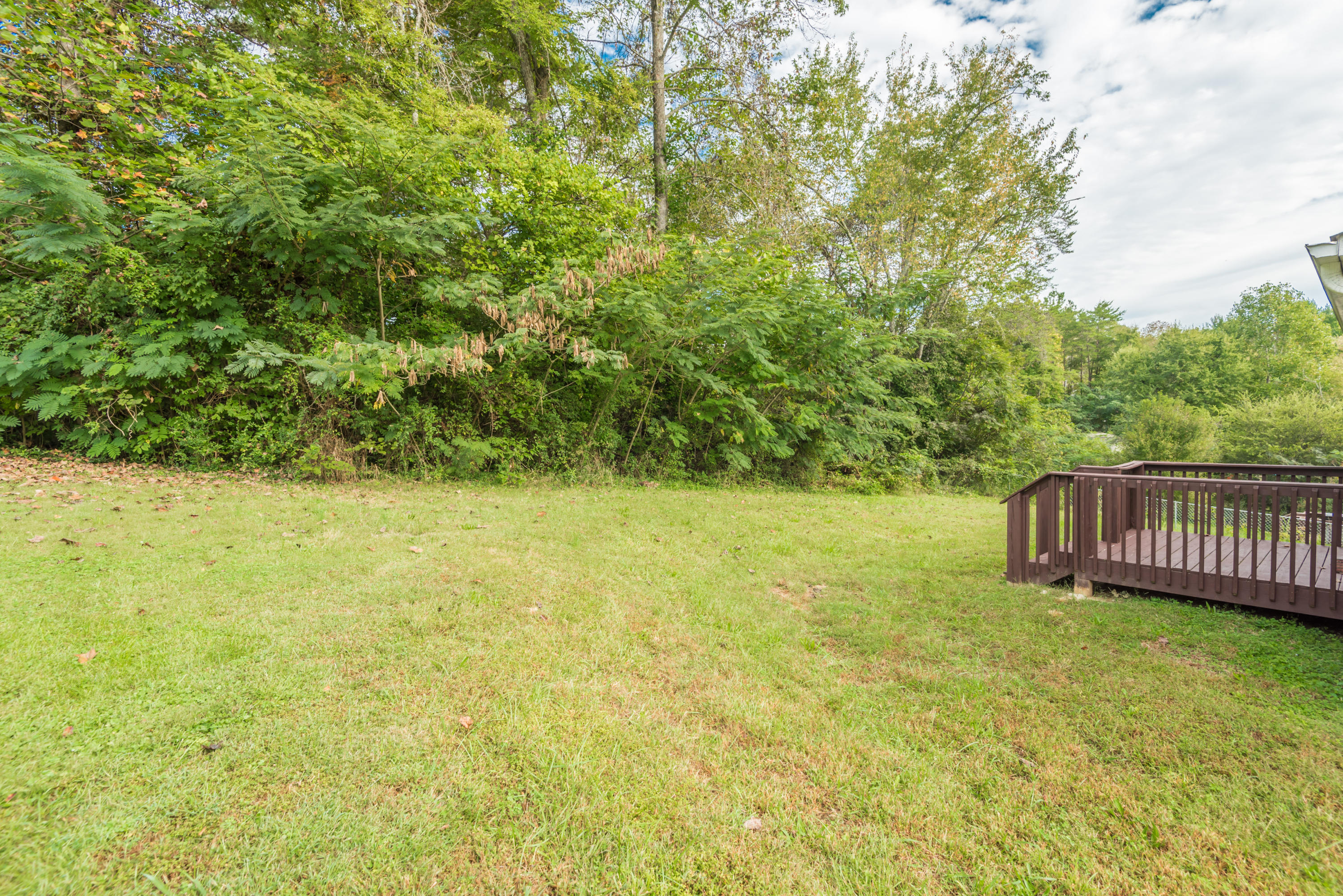 815 Oliver Rd, Knoxville, TN 37920