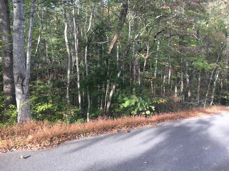 Moonshine Way, Gatlinburg, TN 37738