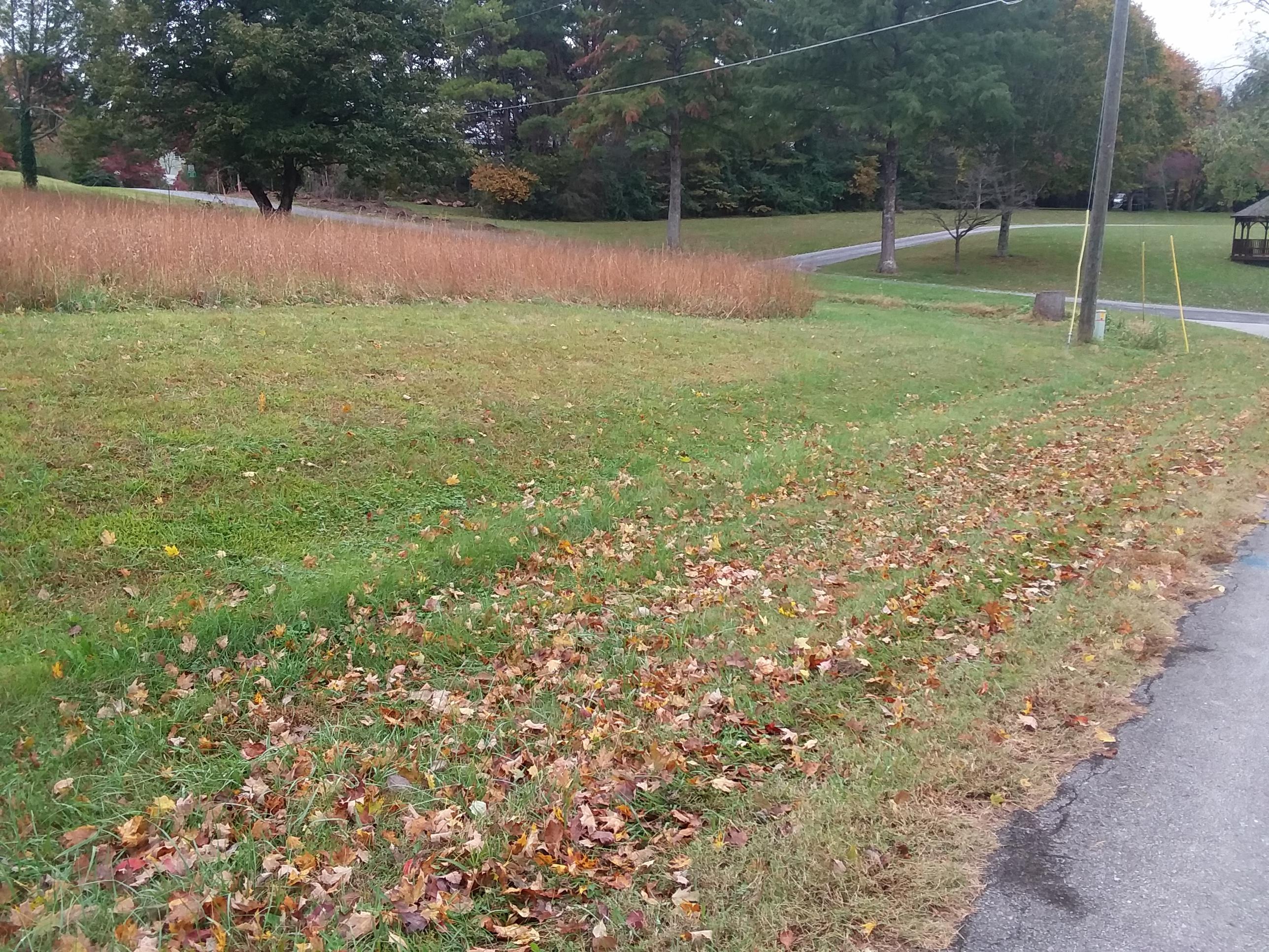 E Chestnut Hill Rd, Townsend, TN 37882