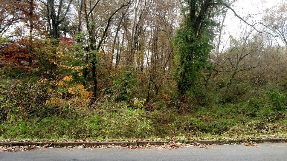 Lot 14 Guille St, Athens, TN 37303