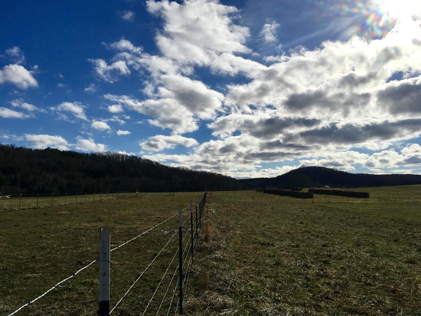 Co Rd 350 Lot #11, Sweetwater, TN 37874
