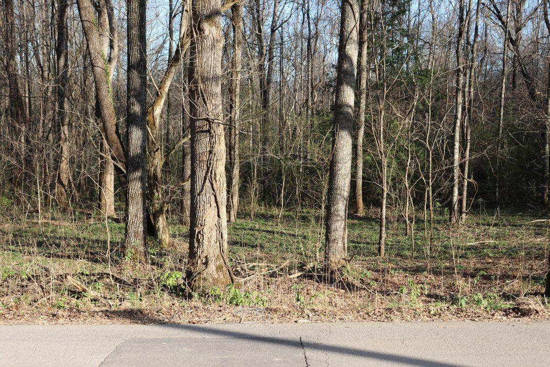 Lot A Dry Valley Rd, Townsend, TN 37882
