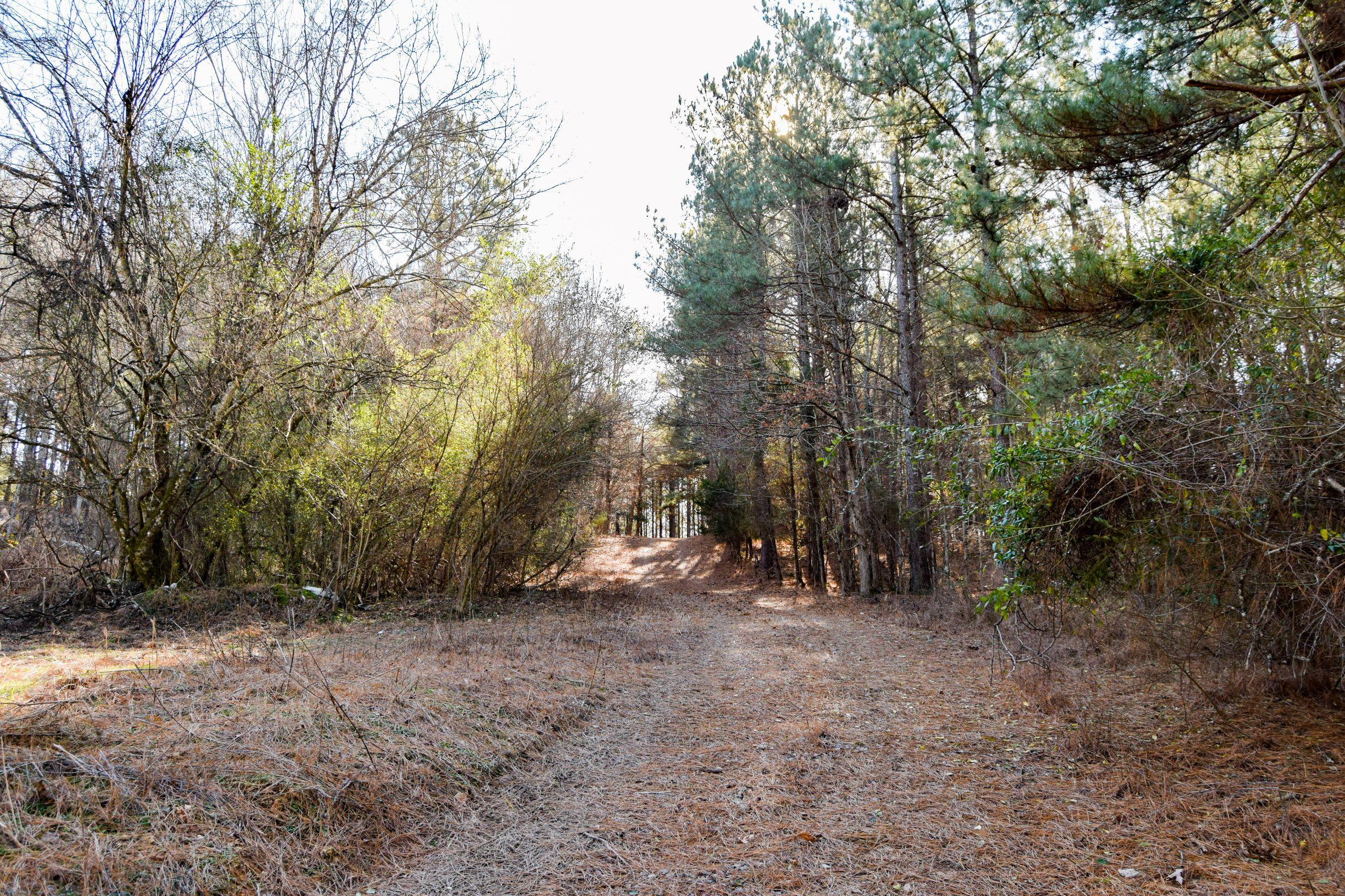5400 Clay Hollow Rd, Sweetwater, TN 37874