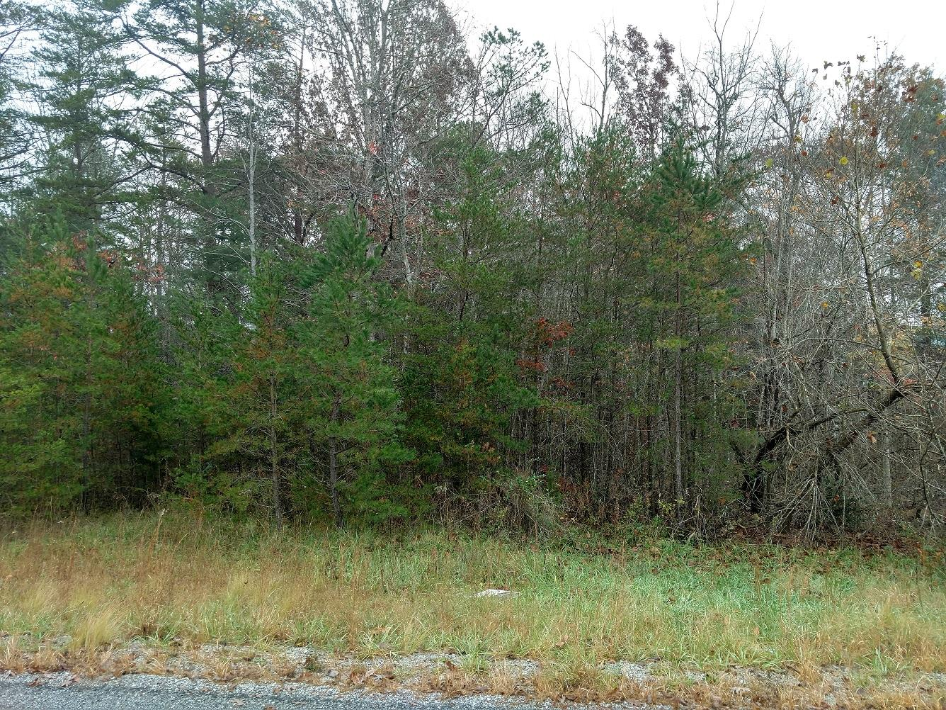 Goodstock Rd, Crossville, TN 38555