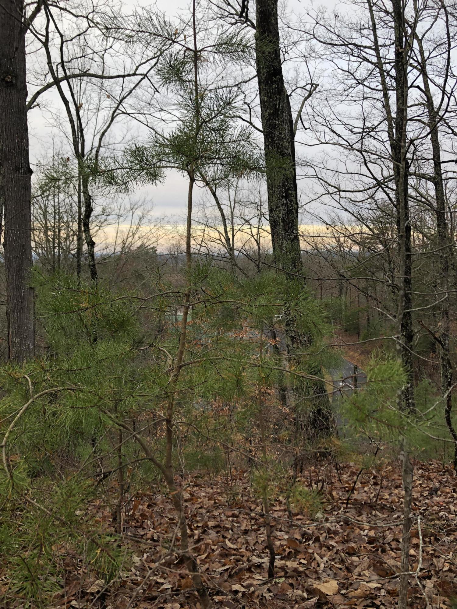 Lot 9-a Monte Wood Circle, Pigeon Forge, TN 37863