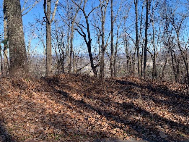 Lot 47 Twin City Way, Pigeon Forge, TN 37863