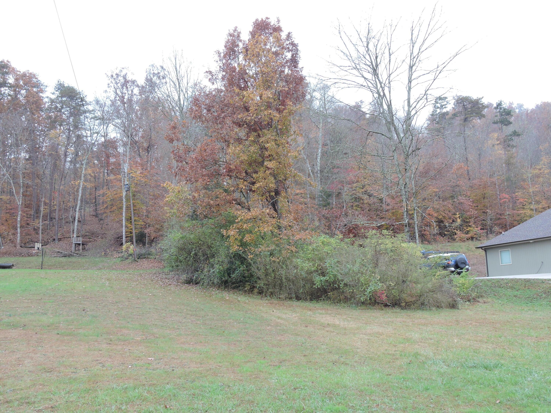 E Brushy Valley Rd, Powell, TN 37849