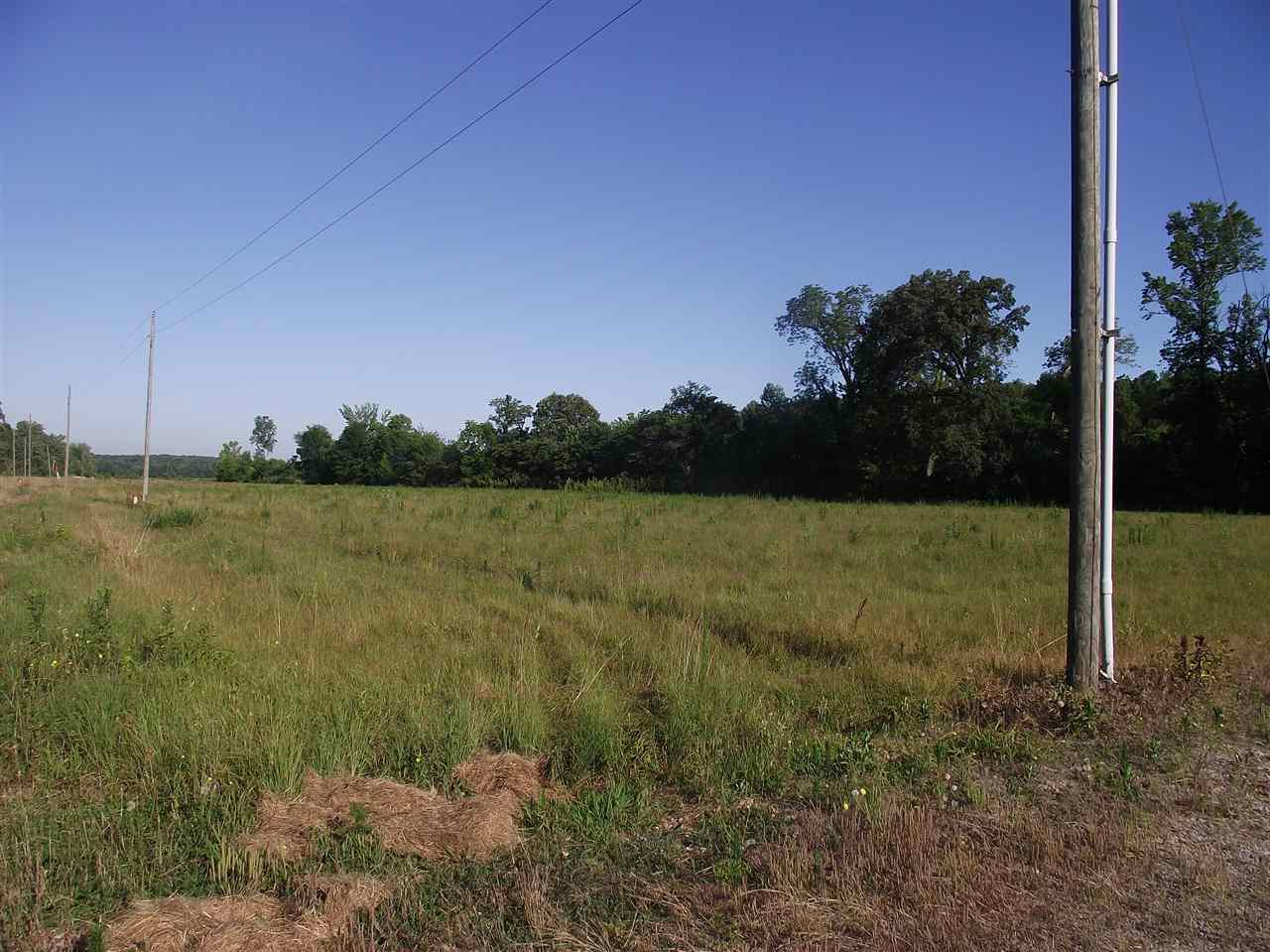 39 Charles Ward, Selmer, TN 38375