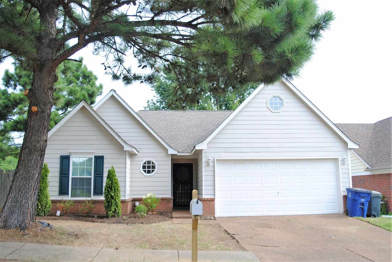 5520 S Angelace, Unincorporated, TN 38135