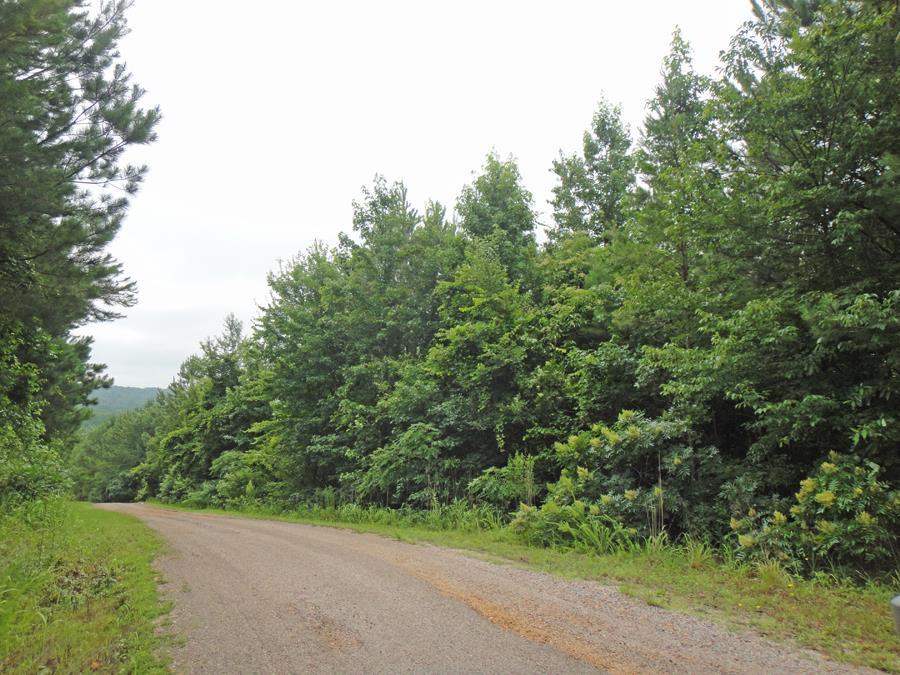 96 Estate, Counce, TN 38326