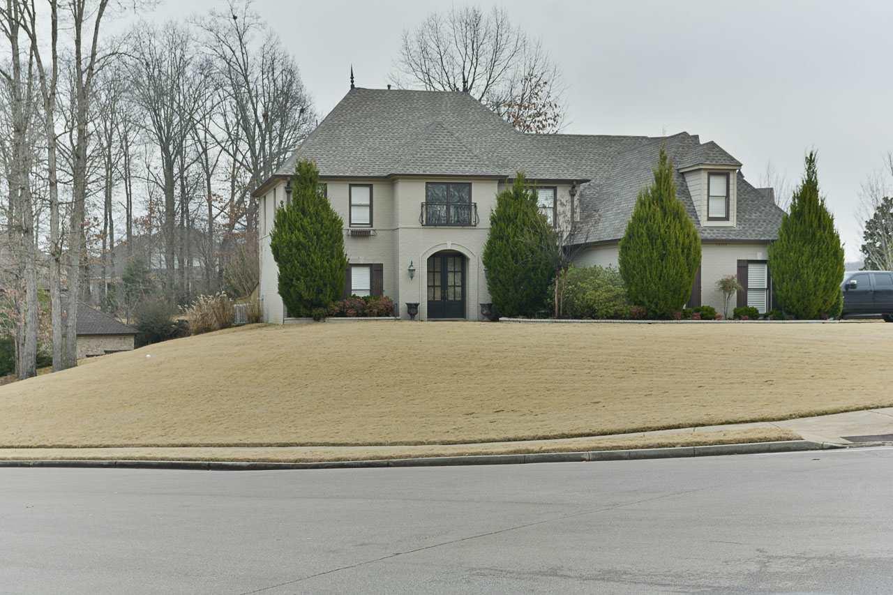 10105 Gillespie Oak, Lakeland, TN 38002