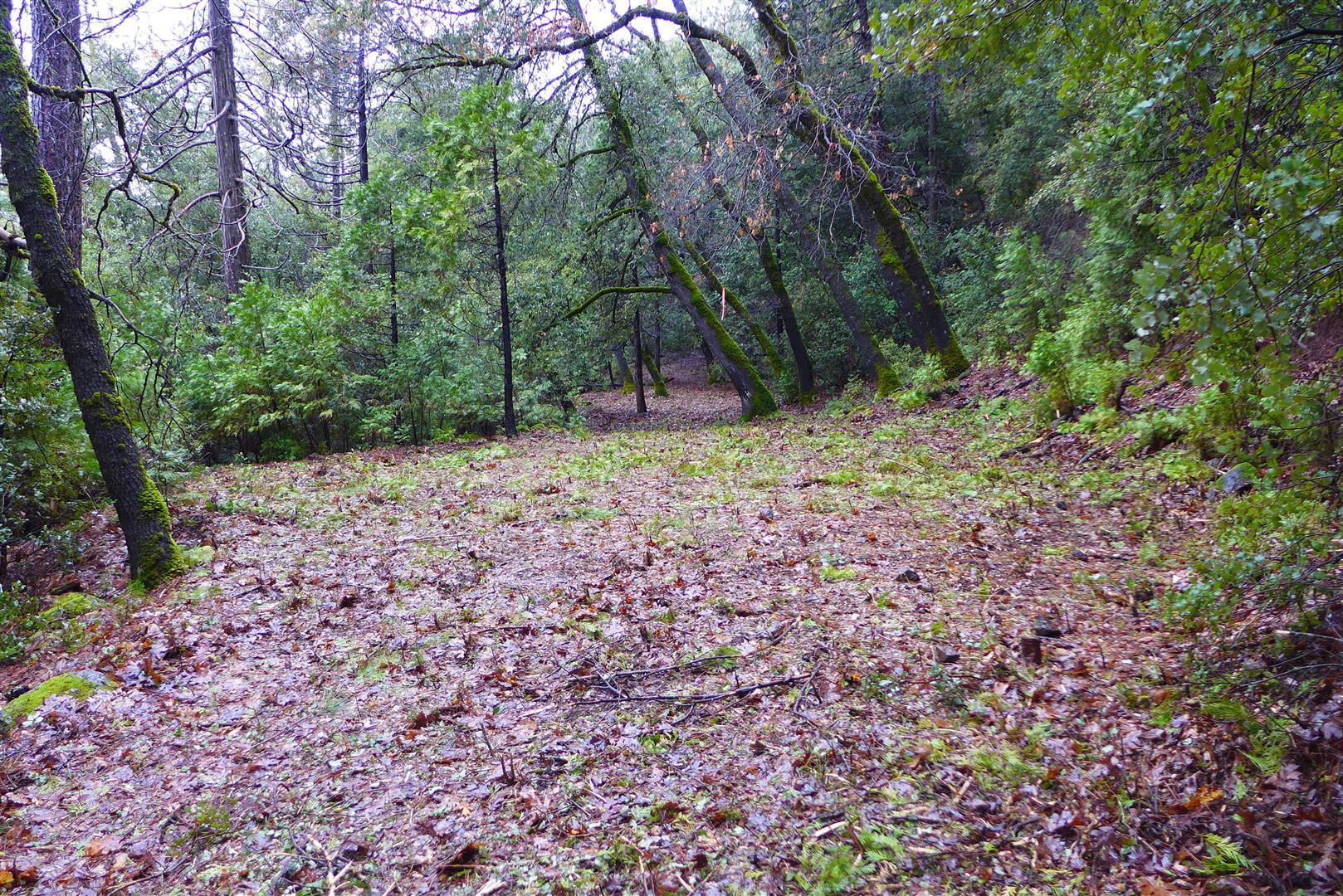 12.3 Acres Oak Run To Fern Rd, Oak Run, CA 96069