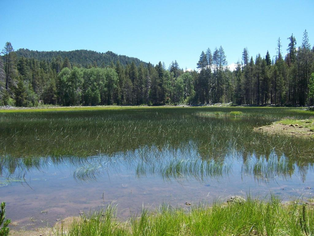 Off Of Ash Pan Rd, Hat Creek, CA 96040