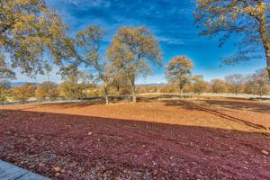 Lot 82 River Downs Way, Cottonwood, CA 96022