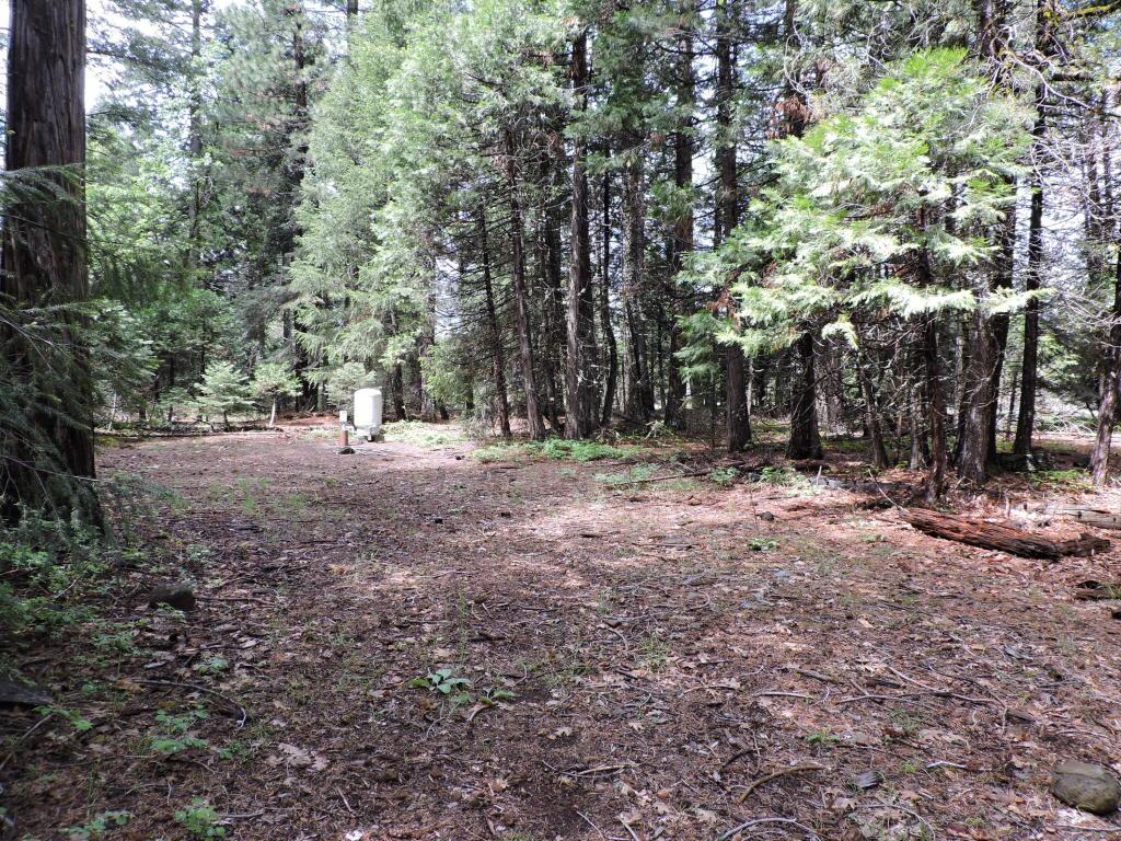 2.1 Acres Trail Blazer Road, Shingletown, CA 96088