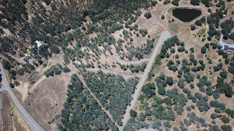 Kodiak, Cottonwood, CA 96022
