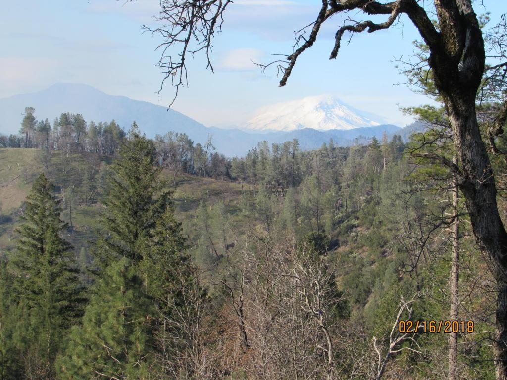 Backbone Ridge, Bella Vista, CA 96008