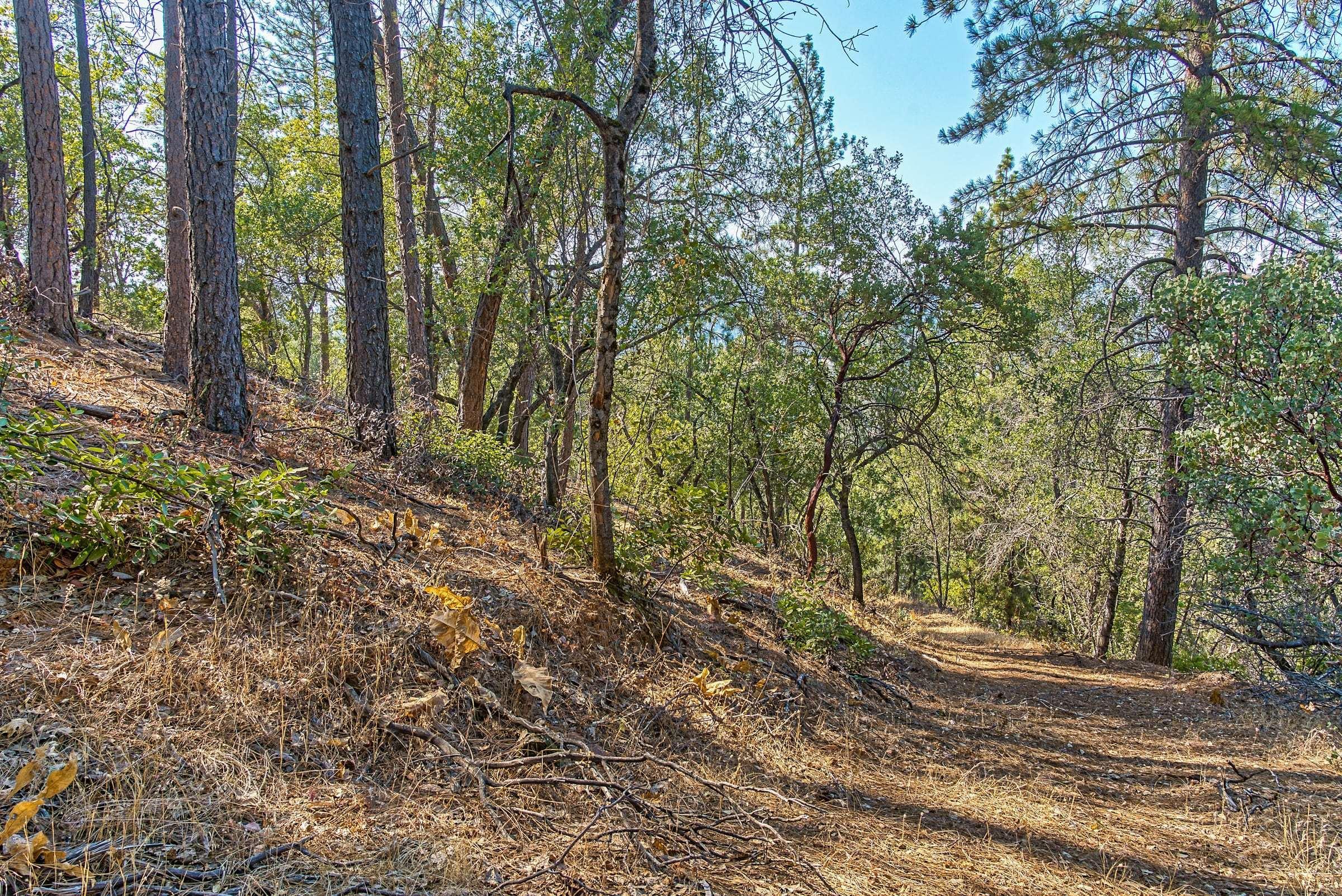 2.29 Acres Jacrene Lane, Redding, CA 96003