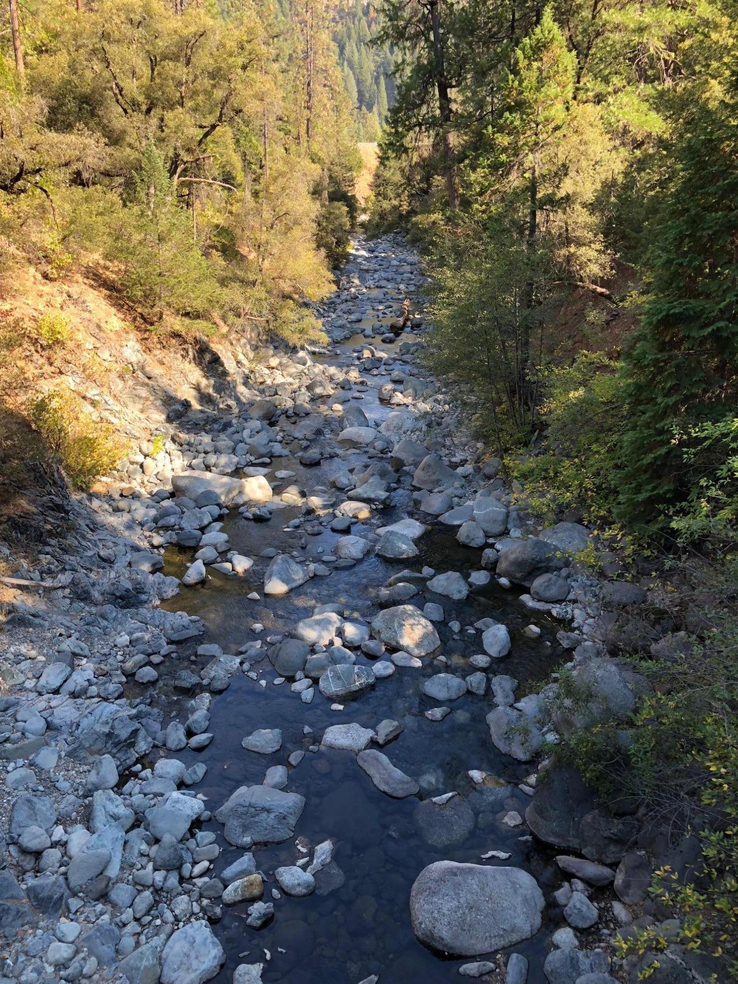 26000 Shotgun Creek Road, Castella, CA 96017