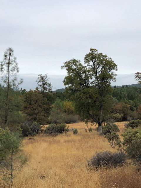 Dittman Rd, Montgomery Creek, CA 96065