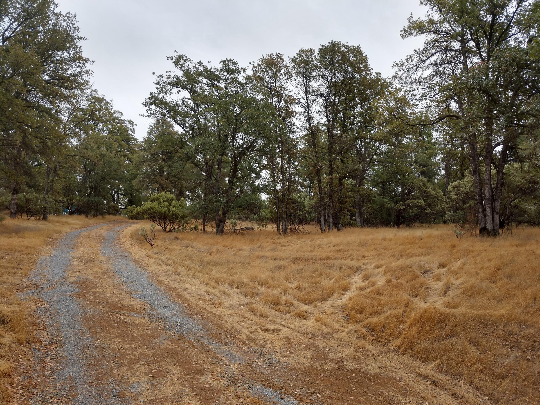 1355 Crooked Oak Ln, Redding, CA 96003