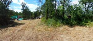Squaw Grass Trl, Redding, CA 96003