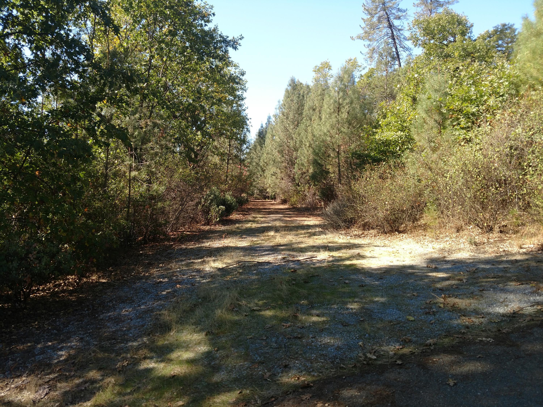 Statton Rd, Lakehead, CA 96051