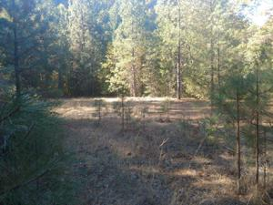 Red Cliff Way, Lakehead, CA 96051