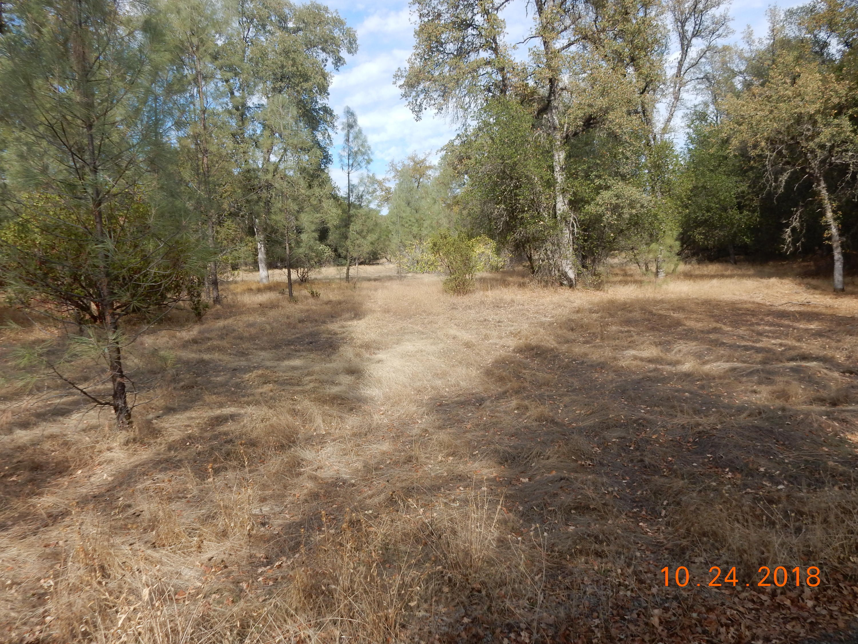 0 Gas Point Rd, Cottonwood, CA 96022