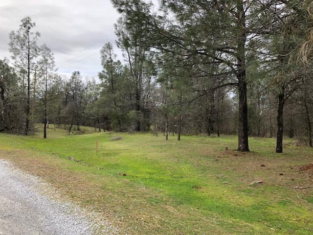 5 Acres Winchester Trl, Redding, CA 96003