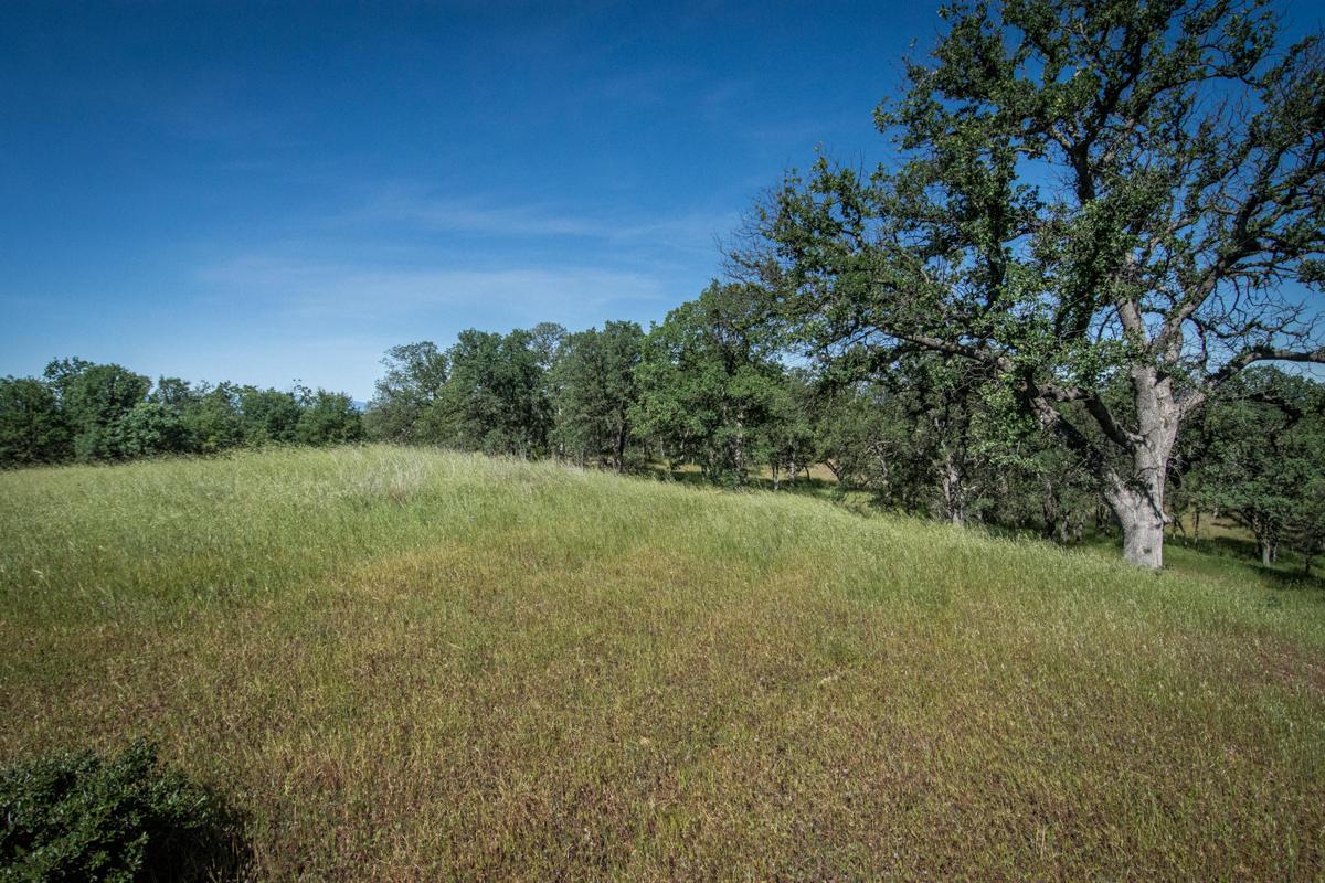 16715 Robin Hood Ln, Cottonwood, CA 96022
