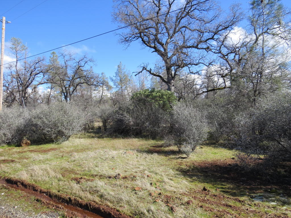 Lack Cr. Rd., Shingletown, CA 96088