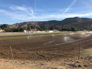 Santa Rosa Road, Camarillo, CA 93012