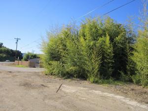 Ventura Avenue, Ojai, CA 93023